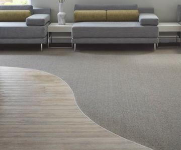 Gradus Carpet To Vinyl Transition Strip Carpet Vidalondon